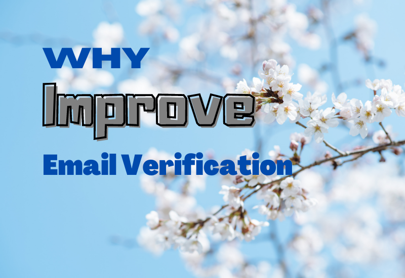 why email verification